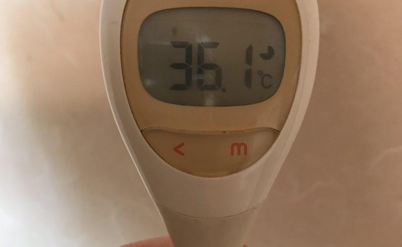 定期的な検温